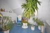**VERMIETET**DIETZ: Hübsche geräumige 3 Zimmer Wohnung mit ca. 100 m² Grundfläche! - Tageslichtbad mit Wanne+Dusche