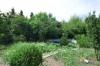 **VERMIETET**DIETZ: 5 Zimmer 230 m² - Terrassen-Wohnung mit Garten, Schwimmbad, Wintergarten, auf ca. 1000m² Grundstück - Blick über Gartengrundstück