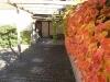 (Verkauft) Tolles Einfamilienhaus, direkt in Babenhausen. Dringend wieder Häuser dieser Art gesucht - Blick 1 in den Hof
