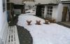 Tolles Einfamilienhaus, zum Freundschaftspreis**DIREKT BABEN HAUSEN - Der Hof und Garten