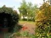 *Verkauft* Solide große Doppelhaushälfte mit tollem Garten und 2 Garagen in Babenhausen OT - Blick in den herrlichen Garten