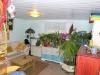*Verkauft*  Doppelhaushälfte mit Nebengebäuden und Garten. - Einliegerwohnung (Wohnbereich)