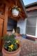 **VERKAUFT**DIETZ:  Wunderschöne Doppelhaushälfte im Landhausstil. - Details