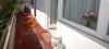 **VERKAUFT**DIETZ: Bezahlbare 4 Zi. ETW in bevorzugter Lage mit Balkon. - Blick auf den Balkon