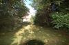 **VERKAUFT**DIETZ:  Freistehendes Einfamilienhaus mit großem Garten und altem Baumbestand - Großer Garten